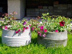 Protected/Unprotected flowerpots in year